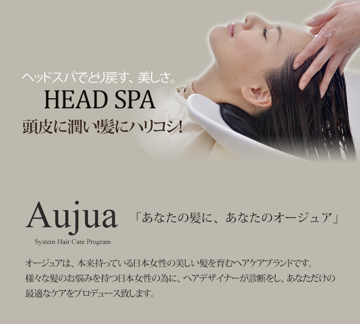 Aujua HEAD SPA 頭皮に潤い!髪にハリコシ!